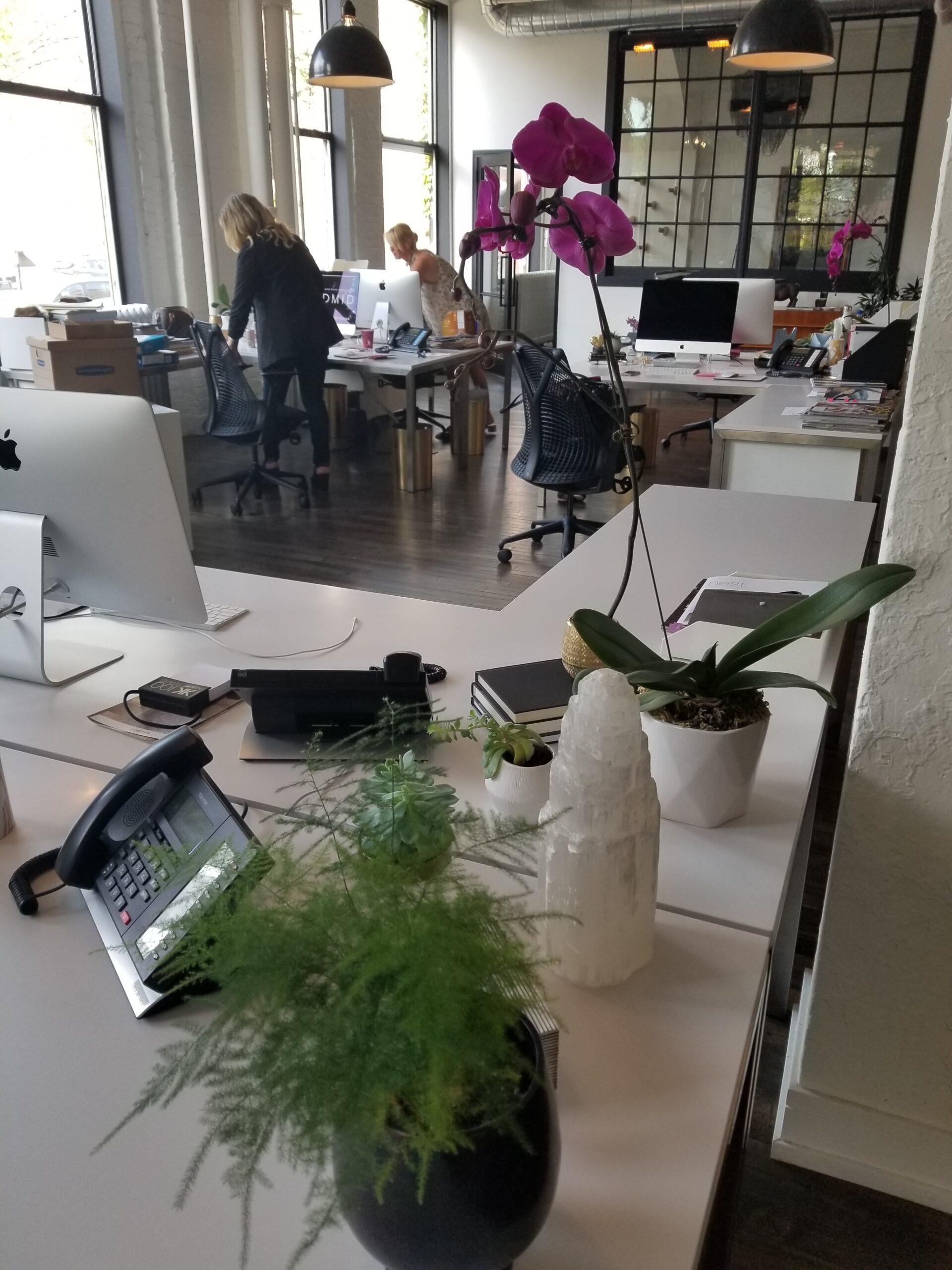 Donna MondiInterior Design office